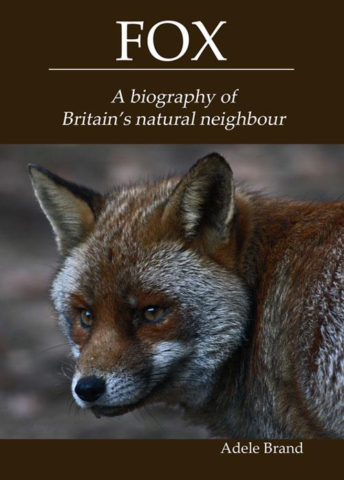 Fox book cover copy2