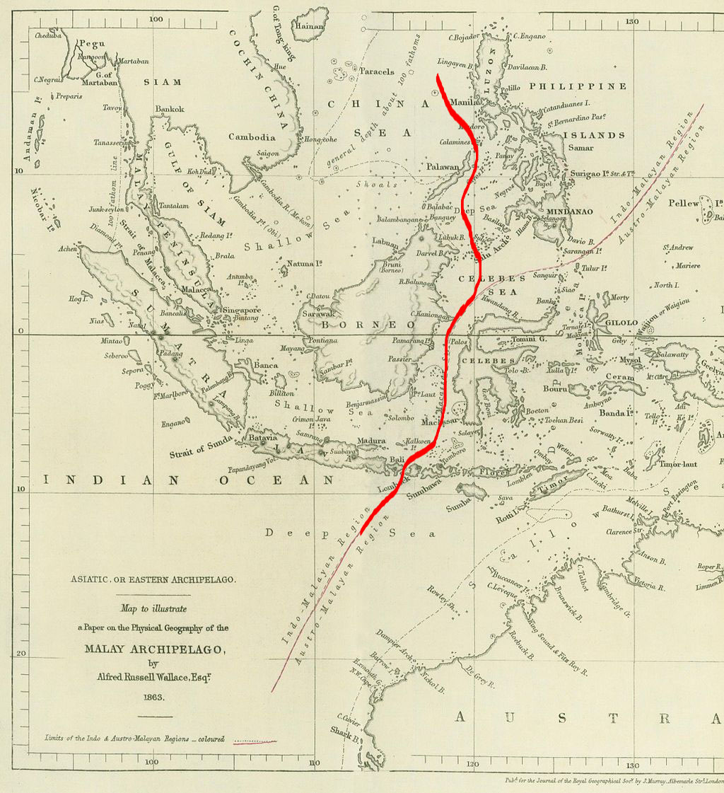 Wallace line map