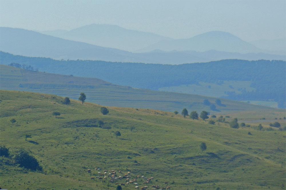 Carpathians from Viscri