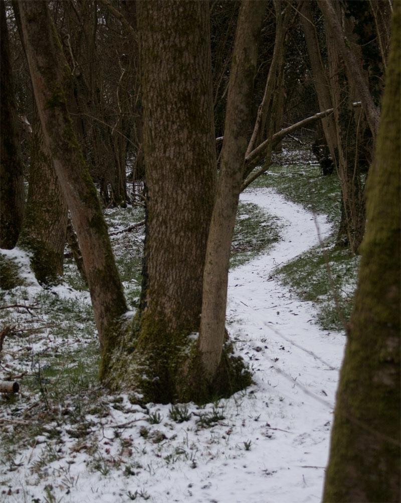 Path 27 Feb 2018