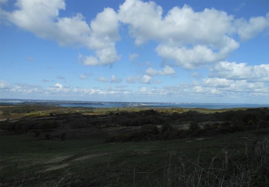 Dorset countryside2