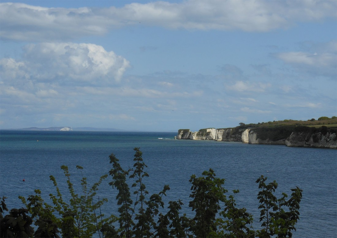 Old Harry Rocks May 18