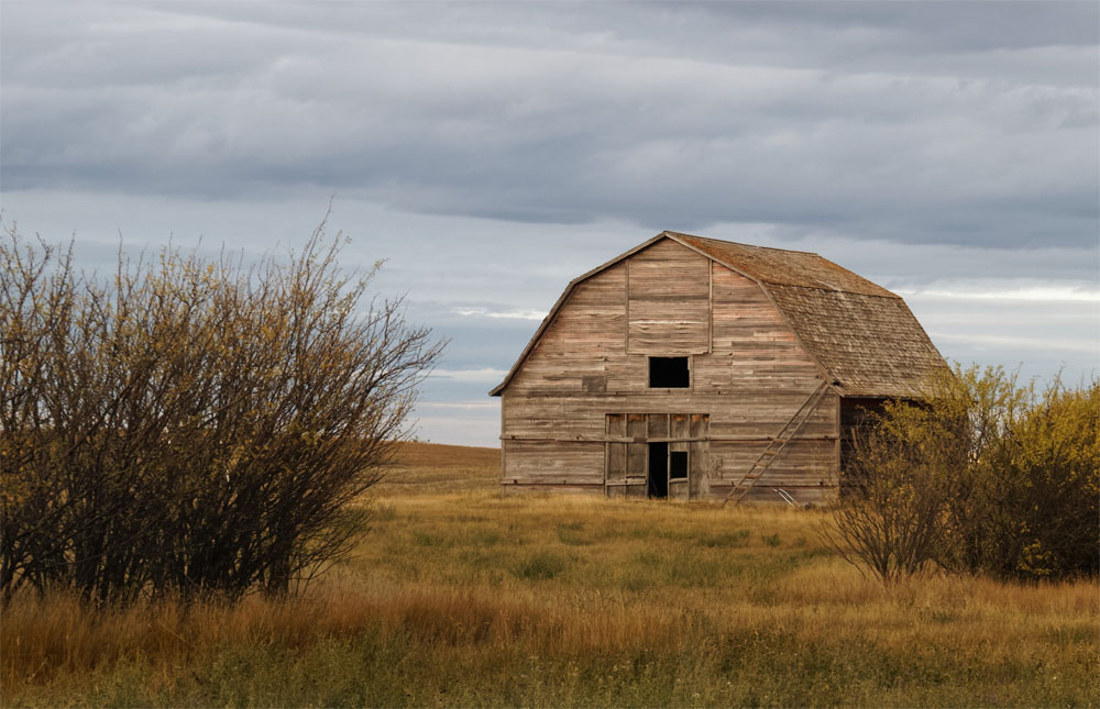 Old barn Sask Sept 18