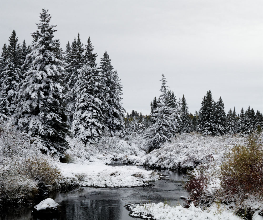 RMNP snow3