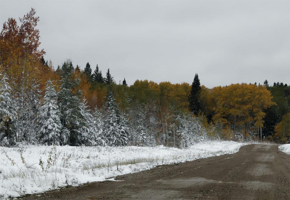 rmnp road2 sept 18