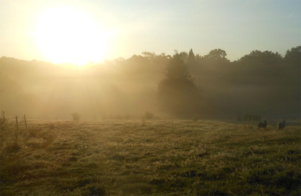 Sunrise1 22 Jul 19