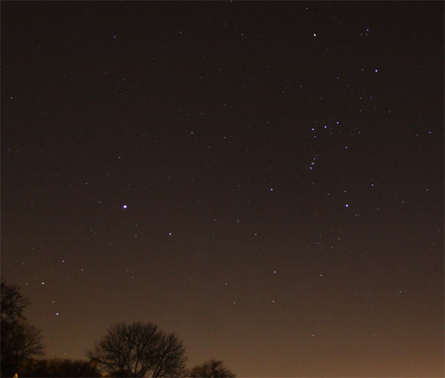Orion and Canis Major march 2011