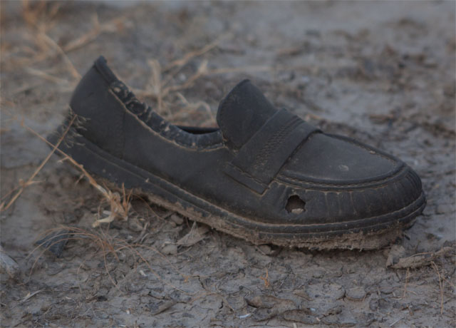 p1c desert fox shoe