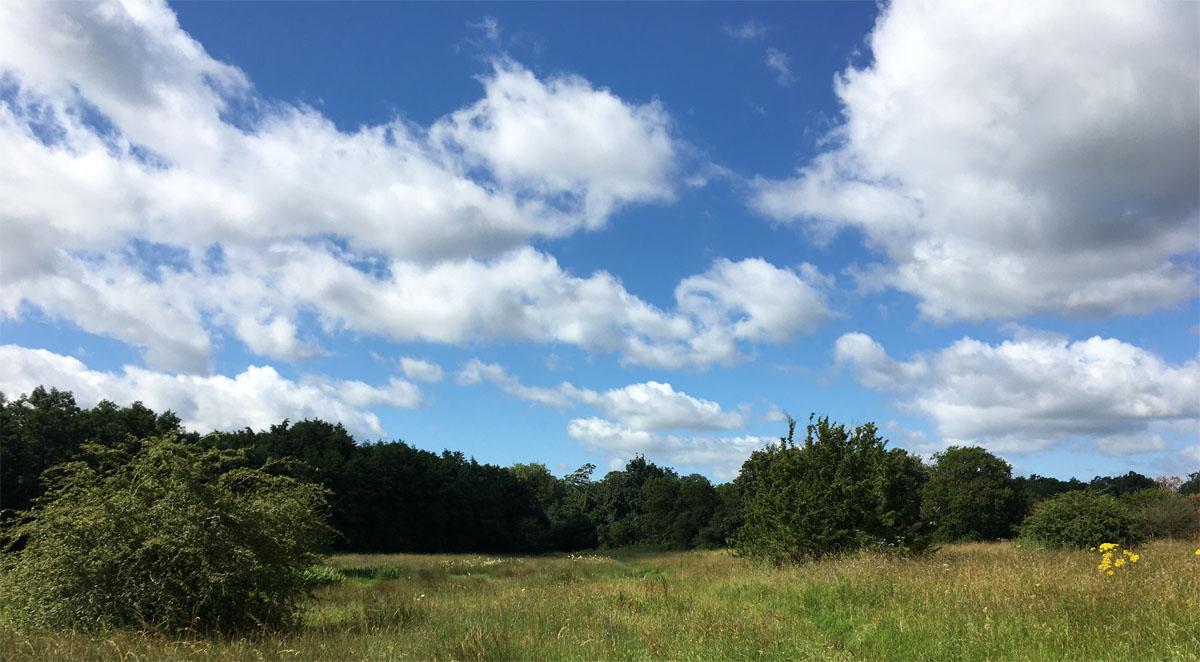 Thompson Common skies 29 Jul 21